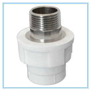 PPR Male Thread Socket in White Color pictures & photos