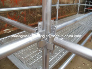 En12810 Certified Steel Ringlock Scaffolding pictures & photos