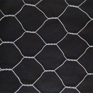 2016 Hot Sale Zhuoda Gabion Made in China pictures & photos