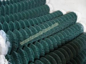 PVC Coated Weave Mesh pictures & photos