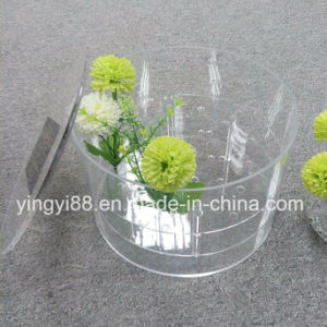 Super Quality Acrylic Flower Box for Lover pictures & photos