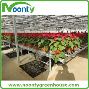 Greenhouse Equipment for Vegetable Growing Bench, Support Table pictures & photos