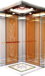 Etched Mirror Hairline Stainless Steel Villa Passenger Lift pictures & photos