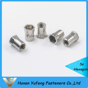 Stainless Steel Rivet Nut Small Head Inside& Outside Hexagon pictures & photos