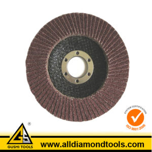 Abrasive Zirconium Oxide Flap Disc pictures & photos
