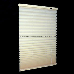 Roller Blinds Home Use (SGD-R-3414) pictures & photos