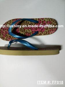 Flat Thong Flip Flop Sandals pictures & photos
