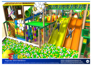 Villege Themed Indoor Playground for Children pictures & photos