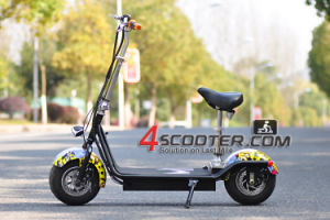 Adult Folding Scooter 800W 8.8ah, 48V Lead-Acid Battery pictures & photos
