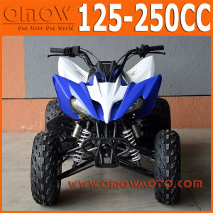 Raptor Style Pantera 250cc Gas Powered 4 Wheel Motorcycle pictures & photos