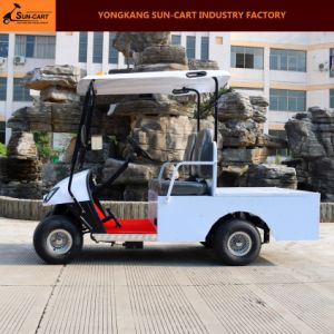 2 Seater Dustomized Electric Transport Golf Cart pictures & photos