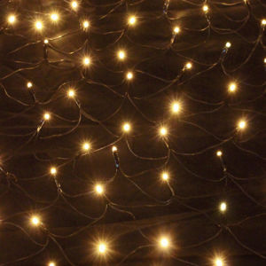 Best Outdoor Lawn LED Net Light for Lawn Decoration pictures & photos