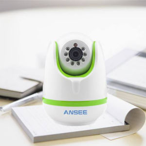 IP Camera with PIR Motion Detector for Home Alarm System pictures & photos