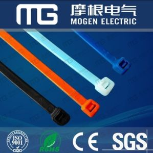 Self-Locking Cable Tie (NYLON) with Ce RoHS pictures & photos