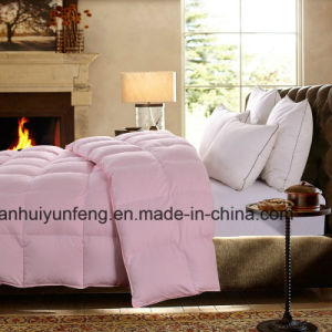 Downproof Cotton Down Duvet for Summer pictures & photos
