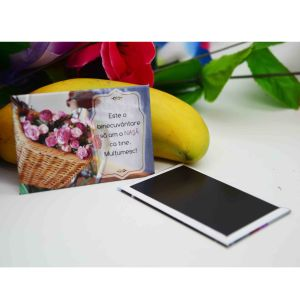 OEM Souvenir Tinplate 53X80mm Fridge Magnet pictures & photos