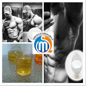 Bodybuilding Injection Testosterone Phenylpropionate with Best Price Steriod for Selling pictures & photos