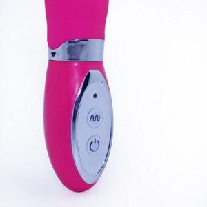5PCS/Lot G Spot Vibrators for Women Dildo Vibrator Vibrating Stick Sex Toys, Shipped by DHL Zd0120 pictures & photos
