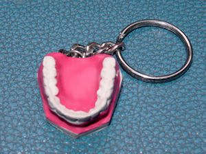 Dental Care Model Keyring pictures & photos