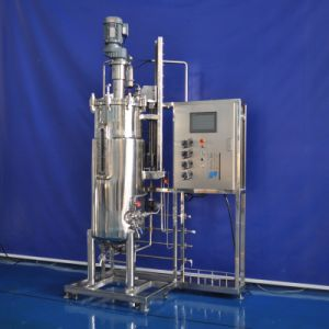 200 Liters Stainless Steel Fermenter (Mechanical stirring) pictures & photos