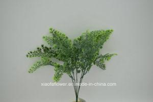 Artificial/Plastic Grass Bush (XF53) pictures & photos