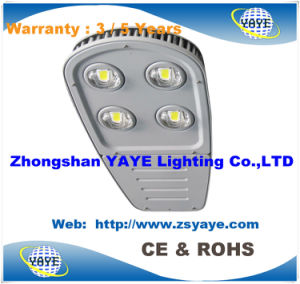 Yaye 18 Warranty 3/5 Years COB 140W LED Street Lights / COB 140W LED Street Light with Meanwell Driver (Available Watts: 100W/120W/140W/160W/180W) pictures & photos