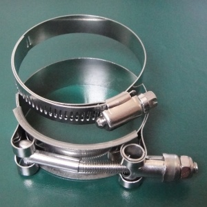 Hose Clamp / Stainless Steel Clamp, ISO Certificated Hose Manufacturer pictures & photos