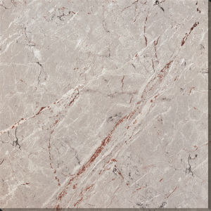 High Quality Porcelain Tiles 600X600mm pictures & photos