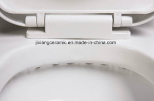 Hot 250mm Rough in Ceramic One-Piece Toilet with Saso/Ce pictures & photos