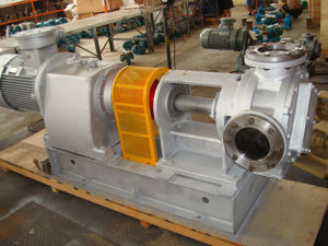 Nyp320 High Viscosity Rotor Pump pictures & photos