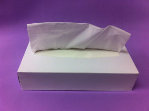 150sheets 2ply Virgin Box Facial Tissue FT150 pictures & photos