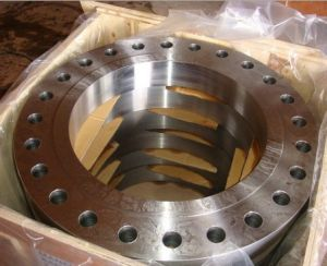 Ring Forged Big Size Flanges pictures & photos