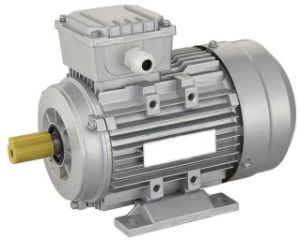 China Ie2 Induction Electrical Motor Ip55 Tefc Ye2 80 355