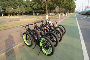 Factory New Progress! Rechargeable 26′ *4 Fat Tyre Bike/Suspension Snow Ebike 1000W pictures & photos