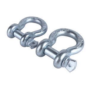 Car Bow Shackles D Rings pictures & photos