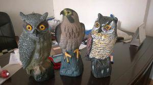 Garden Decoration Owl / Eagle, Anti-Bird Animal Ow/Eagle/Crow