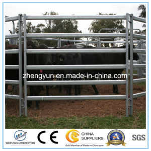 Fence Panel and Accessories Cattle Panel pictures & photos