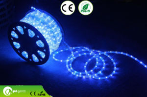 220V LED Rope Light, SMD5050, 60LEDs/M, 14.4W/M, CE/RoHS Approvals
