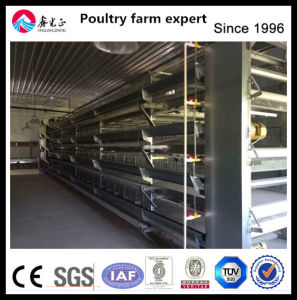 High Quality Automatic Chicken Cage pictures & photos