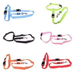 Nylon Running Pet Dog Leash Rope Training Slip Adjustable Traction Collar Rope Chain pictures & photos