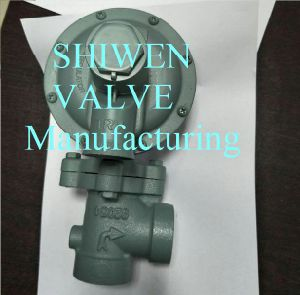 Gas Regulator & Gas Pressure Reducing Valve pictures & photos