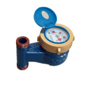 Rotary Vane Vertical Brass Water Metering/Flowmeter pictures & photos