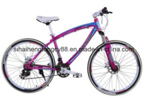 New Style 26inch Steel MTB for Hot Sale pictures & photos