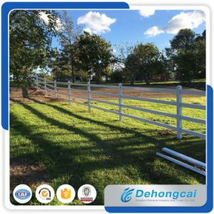 Australia Assembled Galvanized White Powder Coating Wrought Iron Fence/Farm Steel Fence Panel/Ranch Fence & Fence Gate pictures & photos