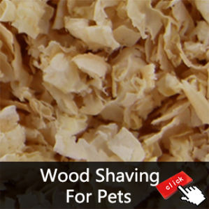 Small Animals and Rabbit Padding Pine Wood Cat Litter pictures & photos