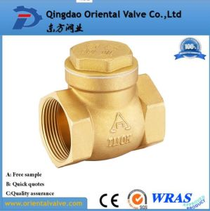Factory Price Dn15-Dn100 High Quality Brass Spring Check Valve with Brass Core pictures & photos
