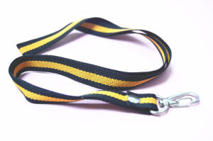 Factory Neck Stripe Lanyard for ID Cards/Badges pictures & photos