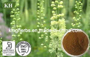 High Quality Black Cohosh Extract Triterpenoid Glycosides 2.5%, 5%, 8% HPLC pictures & photos