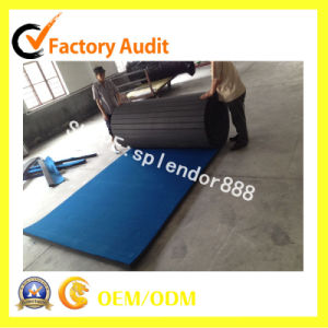 Dollamur Wrestling Mat/Roll out Mat/Judo Mat pictures & photos