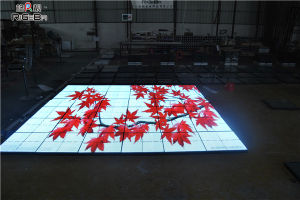 IP56 P10 RGB LED Video Dance Floor for Dancing Lighting pictures & photos